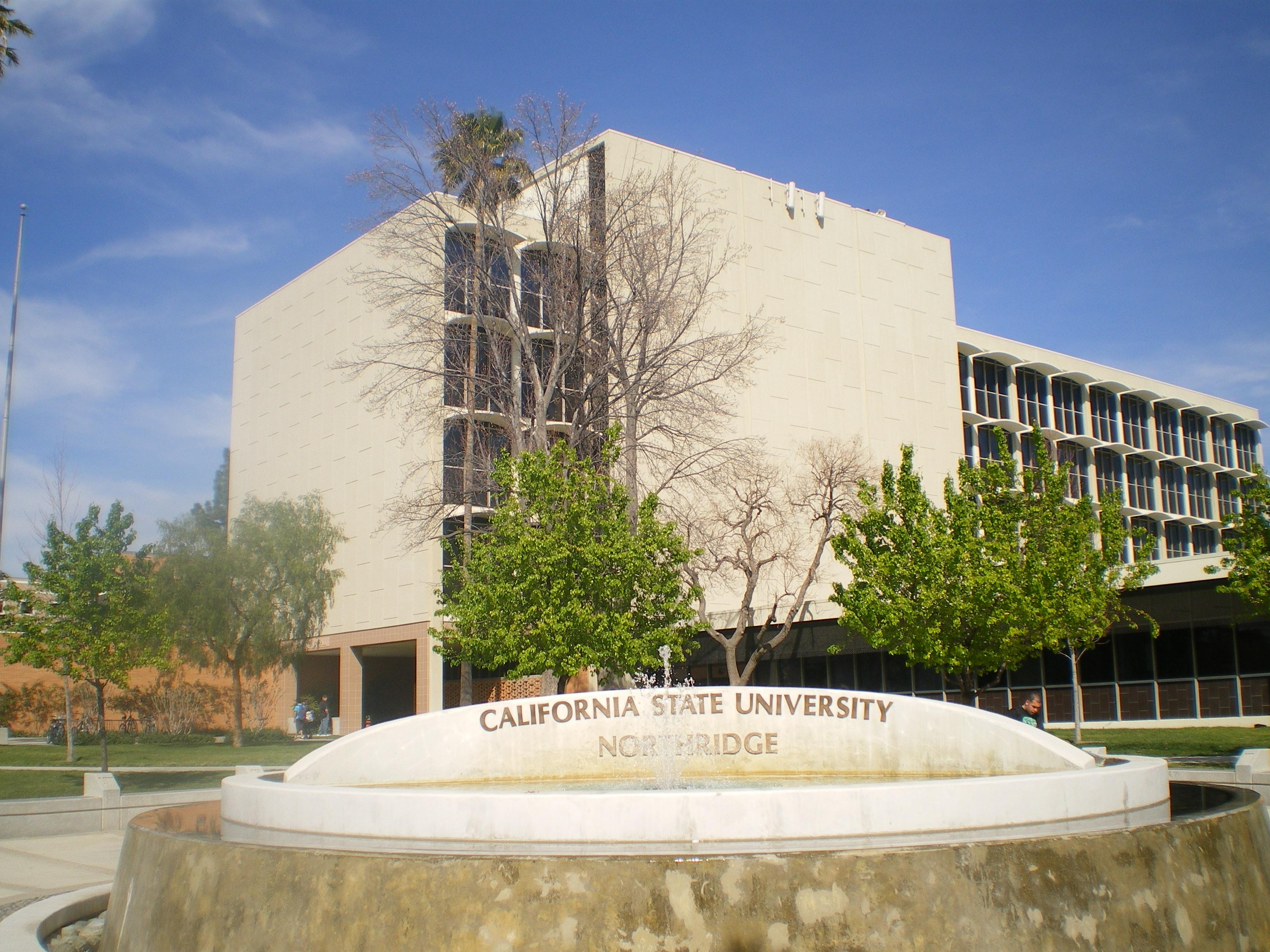 California State University at Northirdge Online MSW