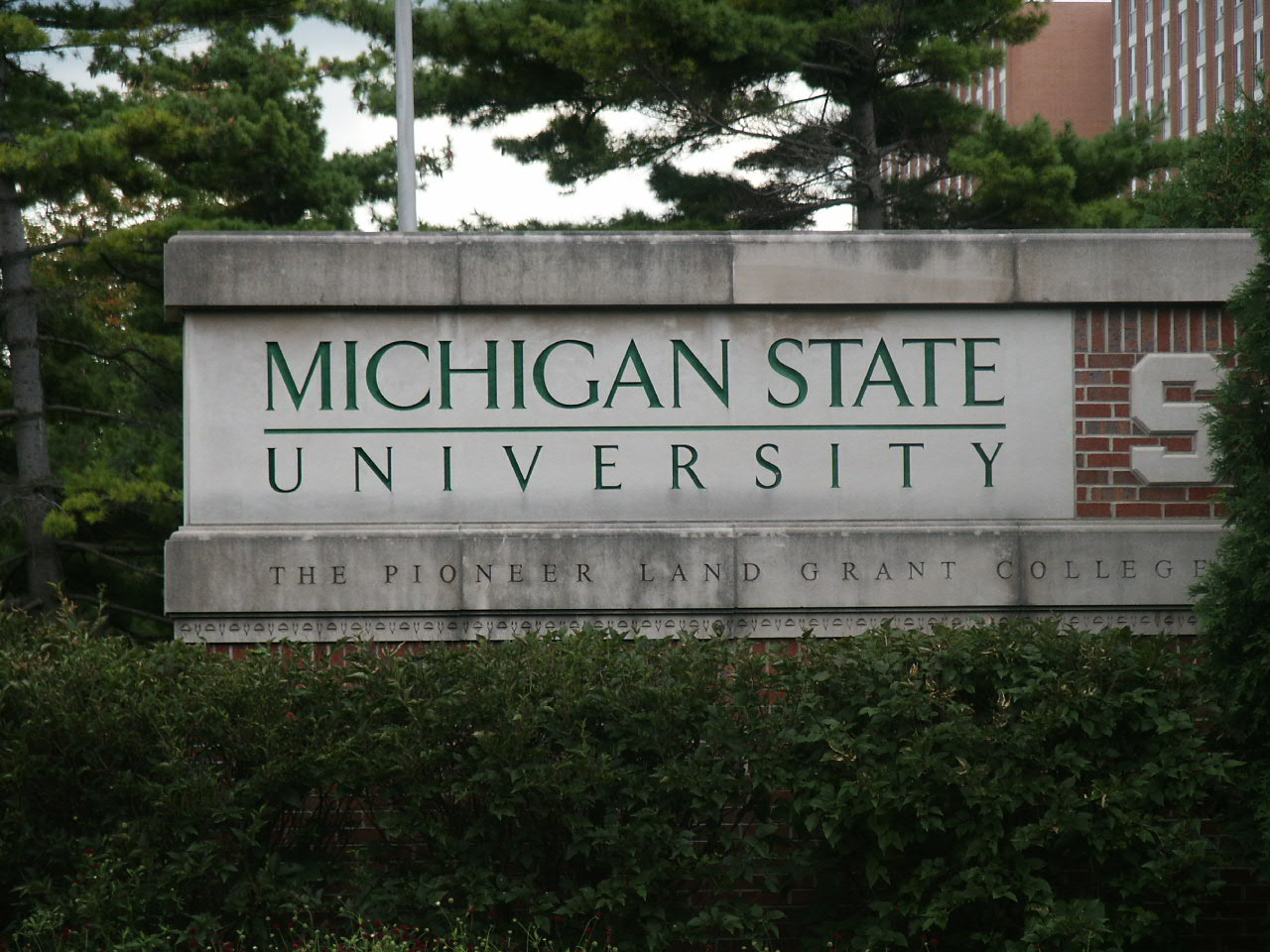 Michigan State University MSW focused on clinical practice